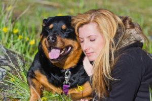 Top 6 Common Myths about Rottweilers | Puff and Fluff Spa