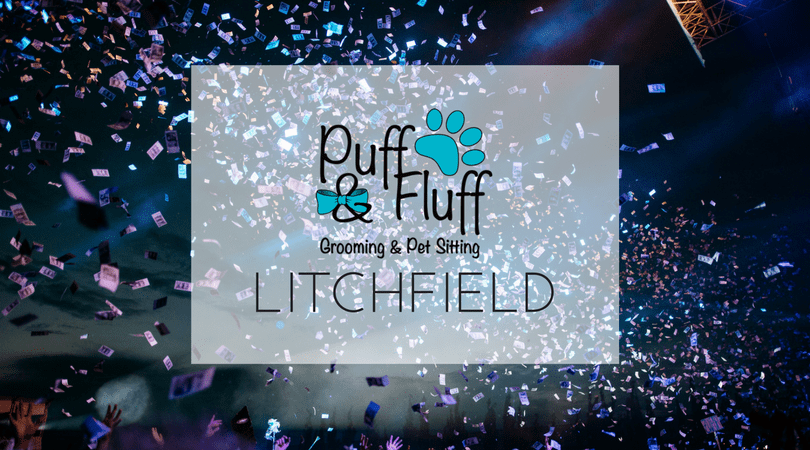 Offers for Grand Opening – Litchfield
