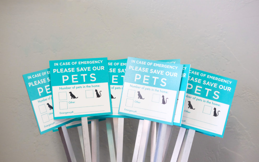 How This Simple Sign Can Save Your Pet's Life