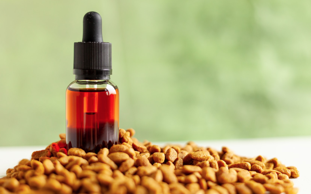 8 Reasons Why Your Pets Should Try CBD Oil